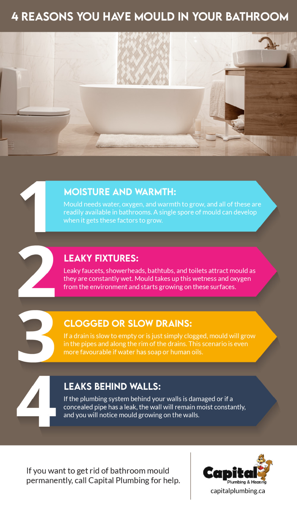 Reasons You Have Mould in Your Bathroom